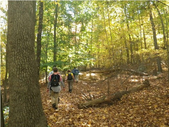 Photo of hikers walking through the autumn woods.